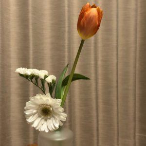 お花の定期便bloomeeLIFE(チューリップとガーベラ)