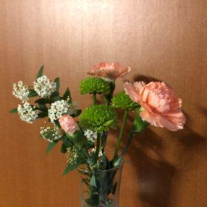 お花の定期便bloomeeLIFE(カーネーション)